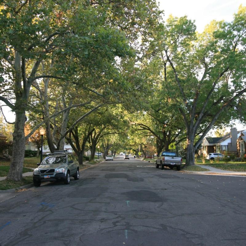 Salt Lake City Street