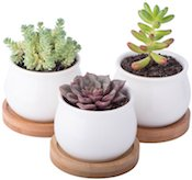 Mini Ceramic Potters