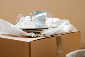 Best Moving Boxes for Dishes