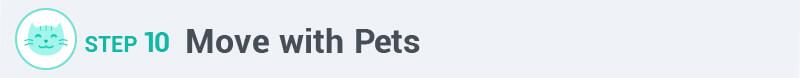 prep your pets